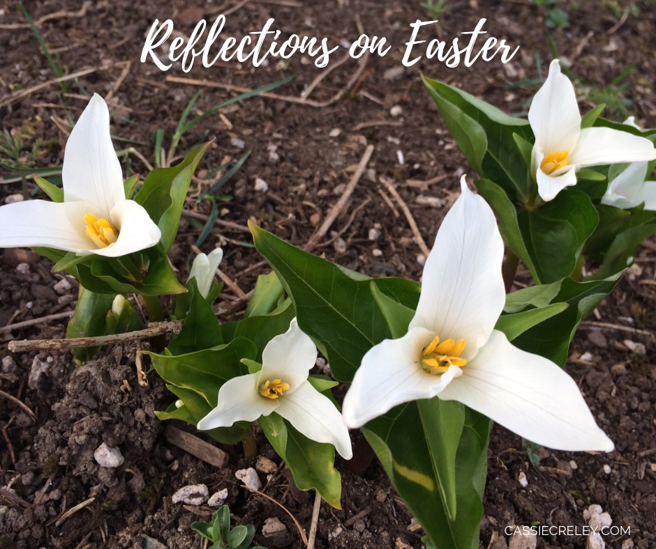 Reflections on Easter – A Collection of Quotes, Bible Verses, and Song Verses   cassiecreley.com